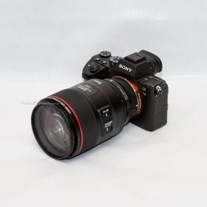 Sony A7III + Canon 85mm F1.4 L IS USM